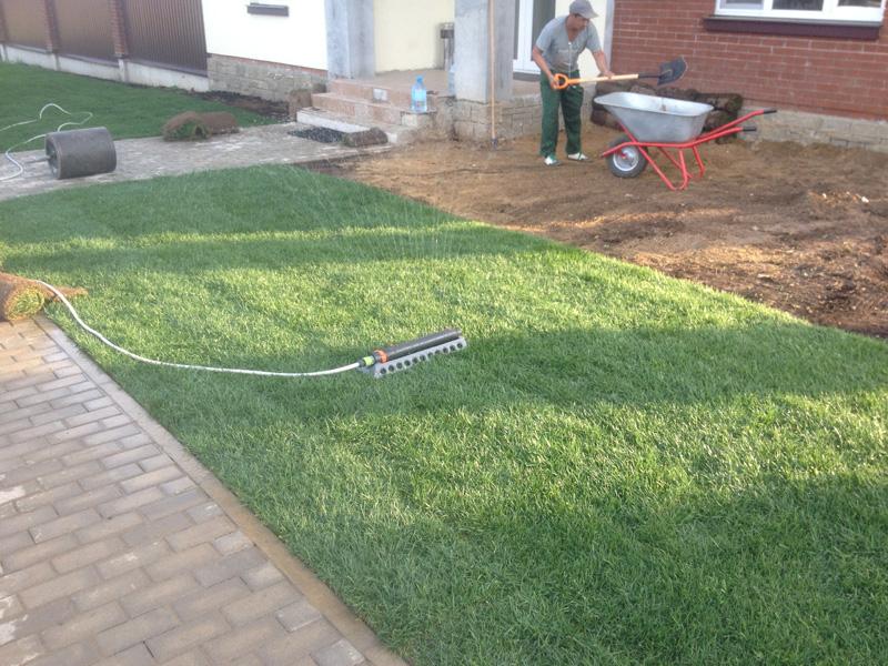 Технологии выращивания рулонного газона 82